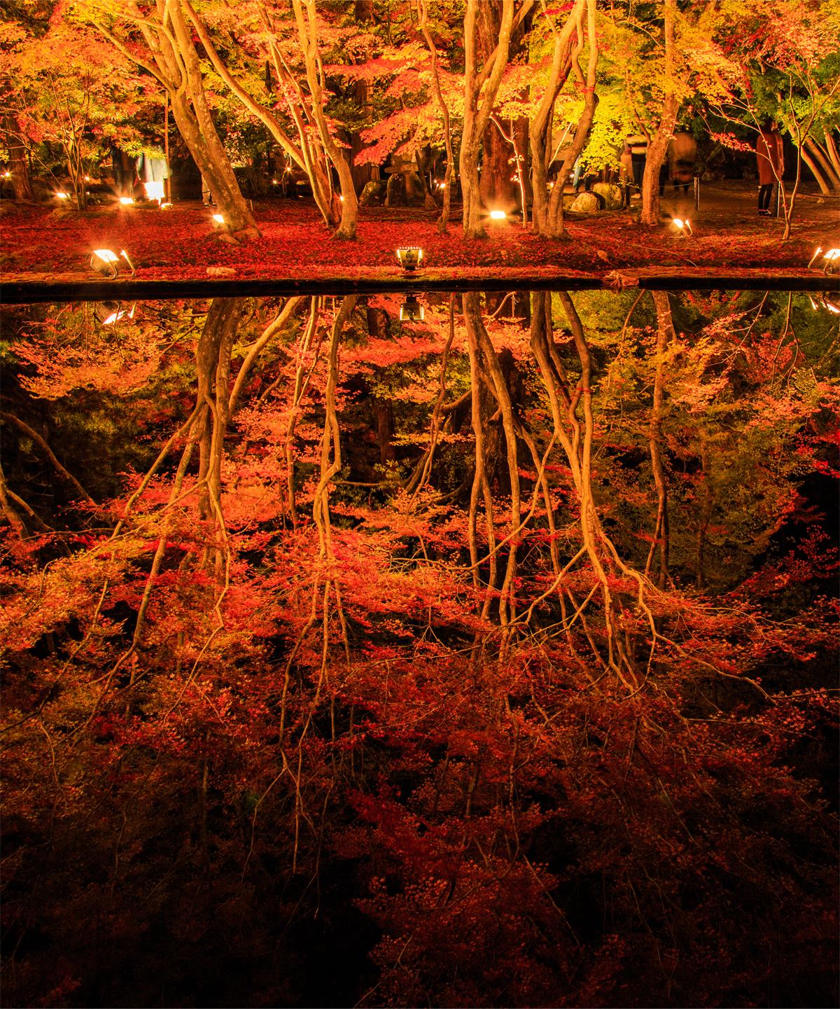 優秀賞_西村修さま「みなもに映る秋」